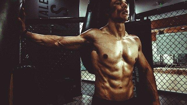 Est-ce que les protéines font prendre du muscle ?