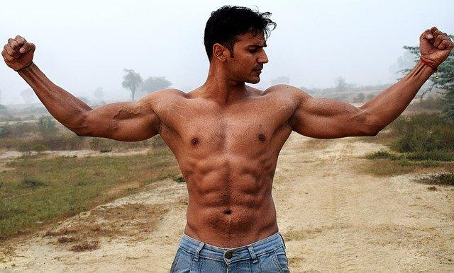 masse de muscle